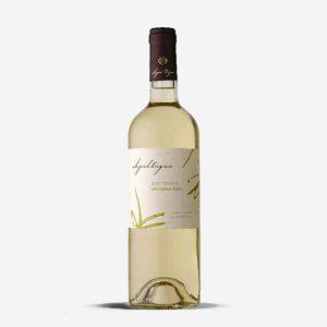 Buy apaltragua sauvignon-blanc- online in Nairobi Kenya